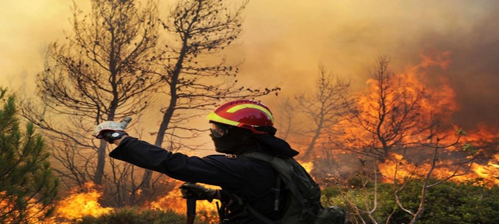 Dichiarazione dello stato di pericolosità per gli incendi boschivi – anno 2017
