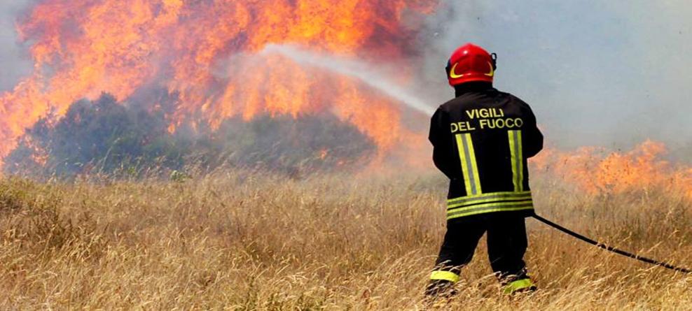 Dichiarazione dello stato di pericolosità per gli incendi boschivi – anno 2018